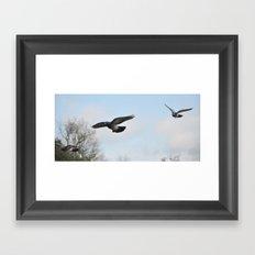Formation flying Framed Art Print