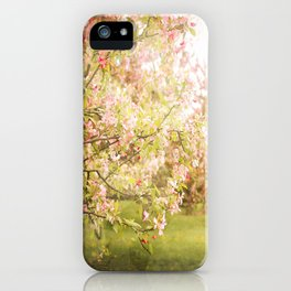 Secret Glances iPhone Case