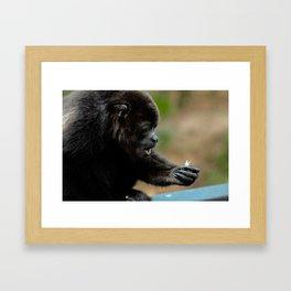 Simple Wonders Framed Art Print