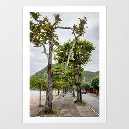 Street of Angra dos Reis (Brazil) Art Print