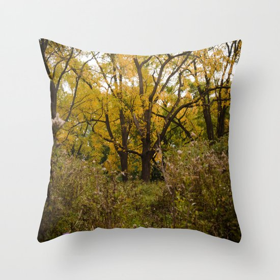 Walk Through Fall Throw Pillow