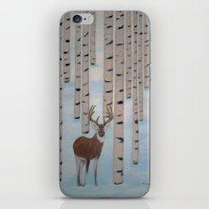 Winter Birch iPhone & iPod Skin