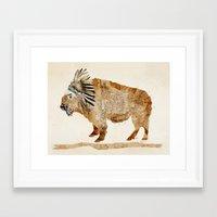 buffalo Framed Art Prints featuring buffalo by bri.buckley