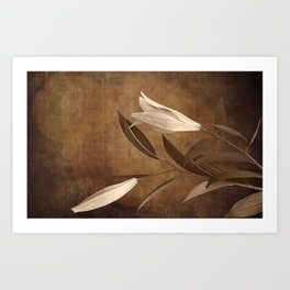 Vintage Flowers Art Print