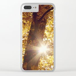 sun in fall Clear iPhone Case