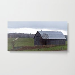 Barn and the Cattle on the hill Metal Print