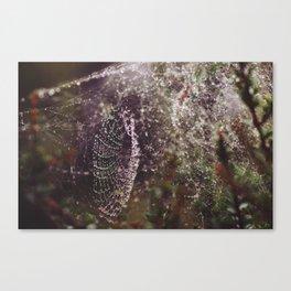 Lacework Canvas Print