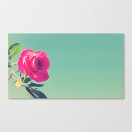 Rosey Tea Canvas Print