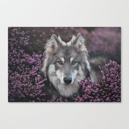 Flower Woof Canvas Print