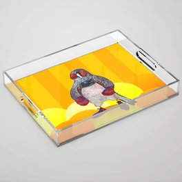 The Energetic Zebra Finch with Boxing Gloves Acrylic Tray