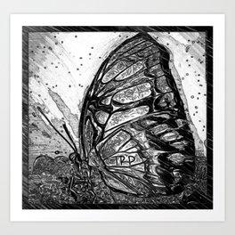 Insect Models: Beautiful Butterflies 09-04 Art Print