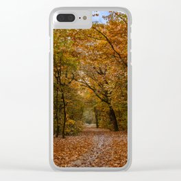 Autumn forest II Clear iPhone Case