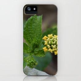 Pillow Flower iPhone Case