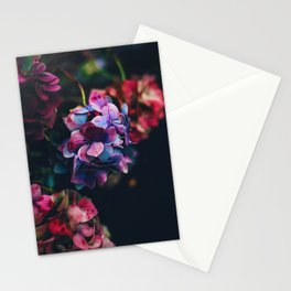 Treasure of Nature I Stationery Cards