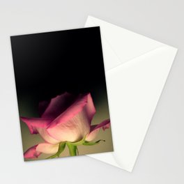 Rose Pink Stationery Cards