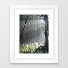 Oregon Sun Framed Art Print