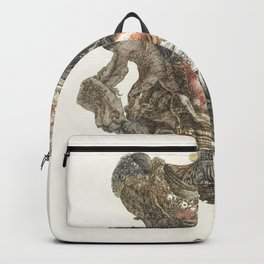 Hercules and griffin jug by Johan Teyler (1648-1709) Backpack