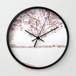 Along the Tidal Basin Wall Clock
