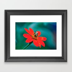 Botanical Garden No. 1 Framed Art Print