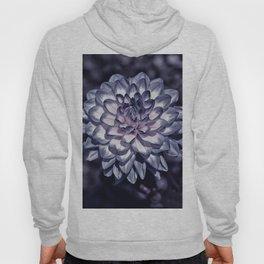 Blooming in purple Hoody