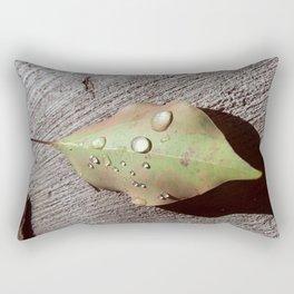 A Gift on My Morning Walk 002 Rectangular Pillow