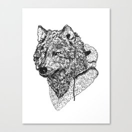 Mr Wolf Canvas Print
