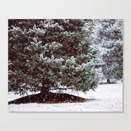 A Winter's Morning I Canvas Print