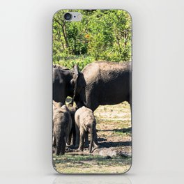 African elephants taking mud bath iPhone Skin