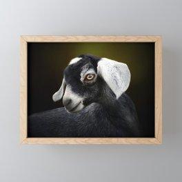 The Baby Goat Framed Mini Art Print