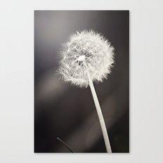 My Most Desired Wish Canvas Print