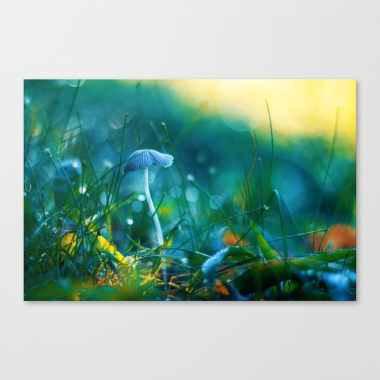 Emerging to Ocean Canvas Print