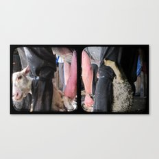 Click Go The Shears - Through The Viewfinder (TTV) - Diptych Canvas Print