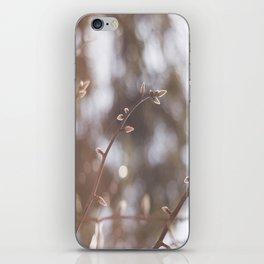 Spring Light iPhone Skin