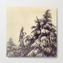 Wintery Fairyland Metal Print