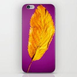 Purple in Autumn Leaf iPhone Skin