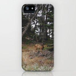 Lobos Deer iPhone Case