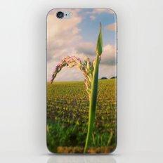 Oculus Grass iPhone & iPod Skin