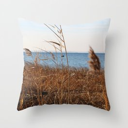 MD'Youville Throw Pillow