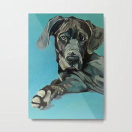 Great Dane Dog Portrait Metal Print