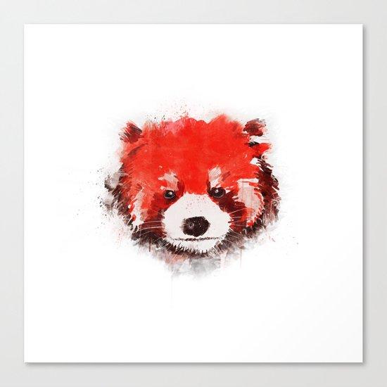 Red Panda (White) Canvas Print