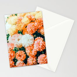 Garden Song #photography #nature Stationery Cards