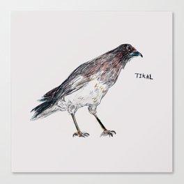 Tikal Bird Canvas Print