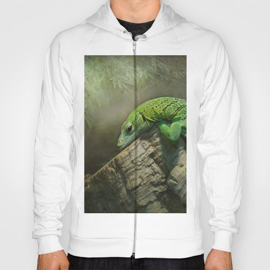 Thinking green thoughts... Hoody
