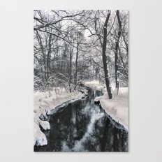 Almost frozen (3\4-BW, HDR) Canvas Print