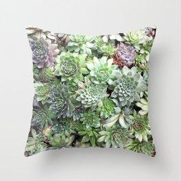 Desert Flower I Throw Pillow