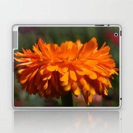 Aroma orange flower Laptop & iPad Skin