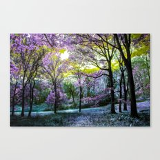 Find Your Terabithia Canvas Print