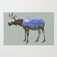 moose Canvas Prints featuring MOOSE by James Wetherington