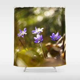 Beautiful Surprise In Spring Forest Shower Curtain