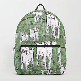 Frolic Backpack